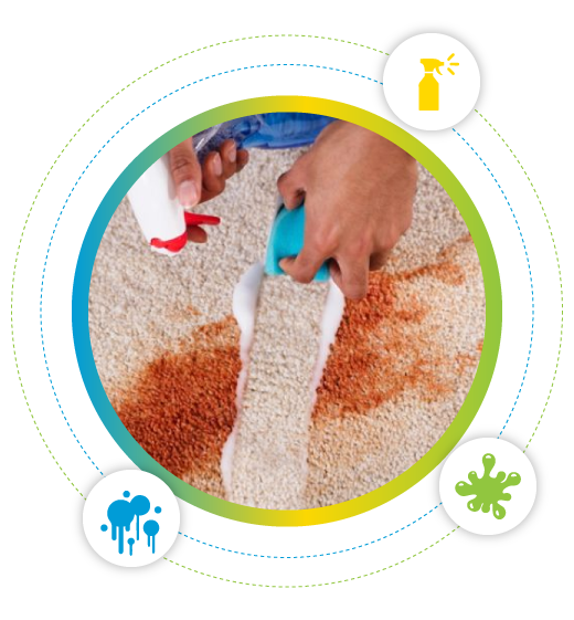 Professional Carpet Stain Removal Service Sandy Bay